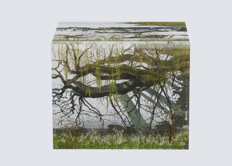Zeit des Grüns, 2014 | Oil on acrylic glass | 20 × 25 × 20 cm